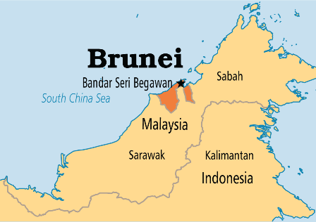Brunei Royal Brunei Airlines: Our Family's Experience